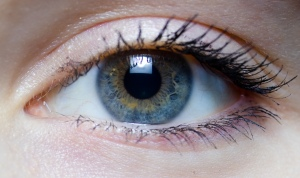 Iris_-_right_eye_of_a_girl