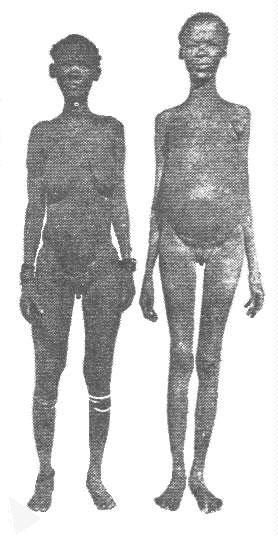 Khoisan.apron, public domain