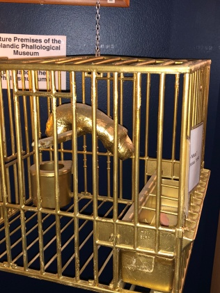 Midas penis in cage