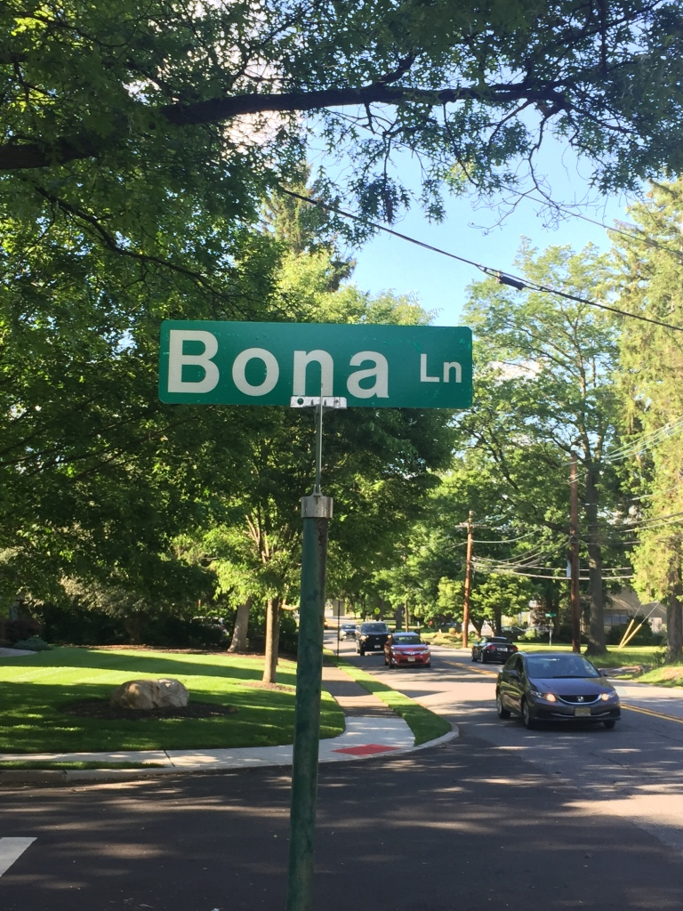 This image has an empty alt attribute; its file name is bona-lane.jpg